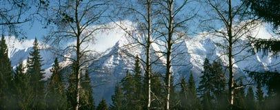 Montagnes rocheuses en automne. Images libres de droits