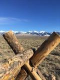 Montagnes rocheuses et prairie image libre de droits