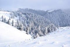 Montagnes Roumanie de CiucaÅŸ image stock