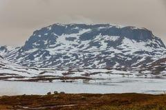 Montagnes scéniques de la Norvège avec le lac congelé Photo stock