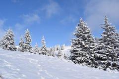 Montagnes toutes de la Roumanie dans le blanc en janvier Photos stock