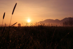 Montagnes tubulaires de la Bavière de kochelsee de marécage de lever de soleil Photo stock