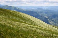 Montagnes ukrainiennes Images libres de droits