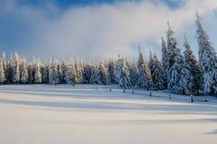 Montagnes ukrainiennes en hiver Photo libre de droits
