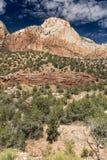 Montagnes, usines et roches Zion National Park photographie stock libre de droits