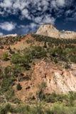 Montagnes, usines et roches Zion National Park photos libres de droits
