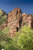 Montagnes, usines et roches Zion National Park photographie stock
