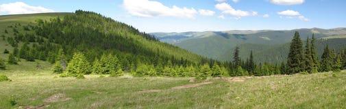 Montagnes vertes Images stock