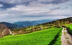 Montagnes vertes Images libres de droits
