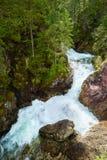 Montagnes vertes Carpathiens de Tatra de l'eau de ruisseau de cascade de forêt Photos stock