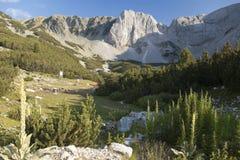 Montagneux Photo stock