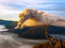 Eruption Bromo stock images