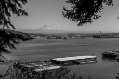 Montain Over Tacoma 3 Stock Photo