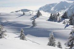 montains снежные Стоковое Фото