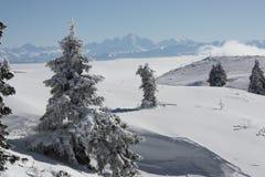 montains снежные Стоковая Фотография