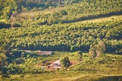 Montains del Brasile Minas Gerais dell'azienda agricola Immagine Stock Libera da Diritti
