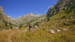 Montains do estrop, o parque de Mercantour, departamento do Alpes-Maritimes foto de stock