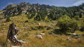 Montains of the estrop, the park of Mercantour, department of the Alpes-Maritimes Royalty Free Stock Images