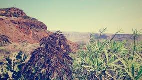 Montains in Gran Canaria Immagini Stock Libere da Diritti