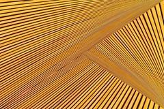 Montaje abstracto de la foto de la madera amarillo-naranja imagen de archivo libre de regalías