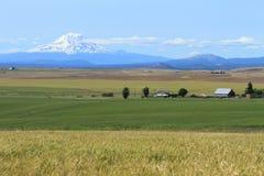 Montaje Adams y campos de granja Fotos de archivo libres de regalías