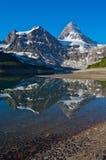 Montaje Assiniboine Fotos de archivo
