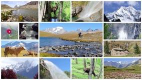 Montaje de las montañas Paisajes, animales y gente en el salvaje almacen de metraje de vídeo