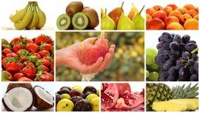 Montaje diverso de las frutas