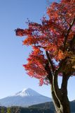 Montaje Fuji en la caída VIII imagenes de archivo