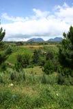 Montaje Kitanglad Foto de archivo