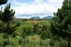 Montaje Kitanglad Imagen de archivo