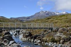 Montaje Ruapehu, Nueva Zelandia Foto de archivo libre de regalías