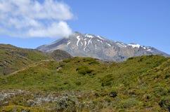 Montaje Ruapehu, Nueva Zelandia Imagenes de archivo