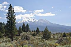 Montaje Shasta Foto de archivo