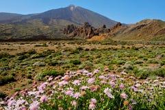 Montaje Teide, en el parque nacional de Teide, Tenerife Imagen de archivo libre de regalías