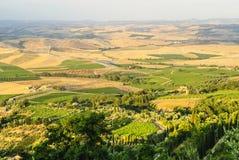 Montalcino (托斯卡纳) 免版税库存图片