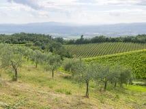 Montalcino (Тоскана, Италия) Стоковая Фотография RF