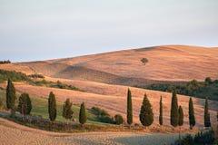 Montalcino Stock Afbeeldingen