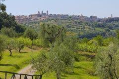 Montalcino Italien fotografering för bildbyråer