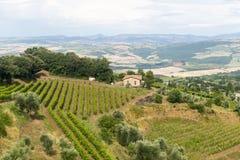 Montalcino (Toscana, Italia) Imagen de archivo libre de regalías