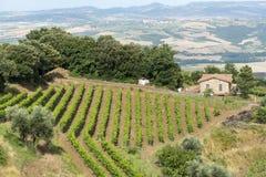 Montalcino (Toscana, Italia) Fotos de archivo libres de regalías