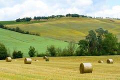 Montalcino (Toscanië, Italië) Stock Foto's