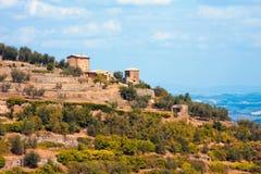 Montalcino Toskana lizenzfreie stockfotografie