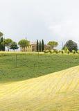 Montalcino (Tuscany, Italien) Arkivbild