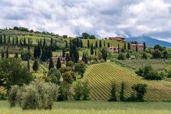 MONTALCINO TUSCANY/ITALY - MAJ 20: Bygd runt om den Sant myran Arkivbilder