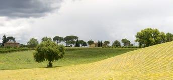 Montalcino (Tuscany, Italy) Royalty Free Stock Image