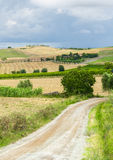 Montalcino (Tuscany, Italy) Stock Photo