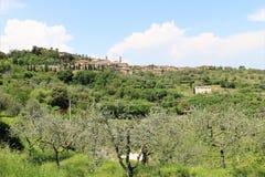 Montalcino, Tuscany, W?ochy obraz stock