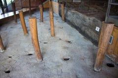 Montale de terramare de musée d'europ préhistorique de l'Italie de vgillaggio de Modène photos libres de droits