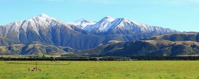Montan@as alpestres Nueva Zelandia Imagen de archivo